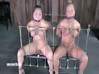 Dia Zerva And Breast-feed Dee Fetish