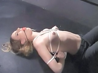 Fifi bound and punished